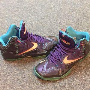 Nike Shoes   Lebron James 1s Charlotte